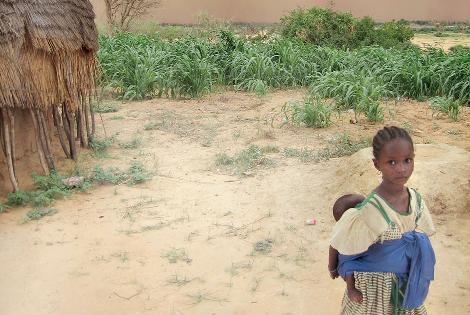Safi Sarl - Niger